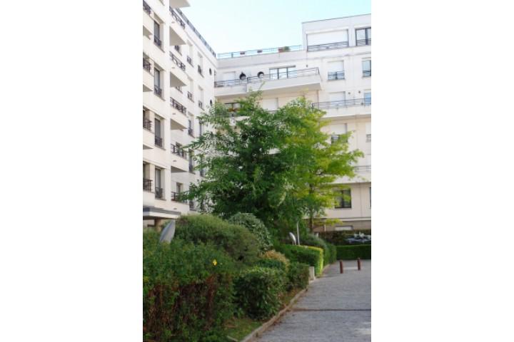 Location appartement 4 pièces 83m² - 1479