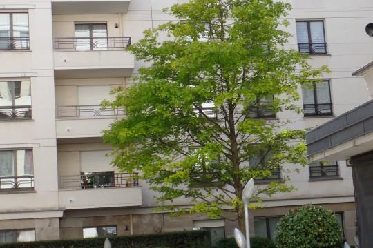 Location appartement 2 pièces 53m²