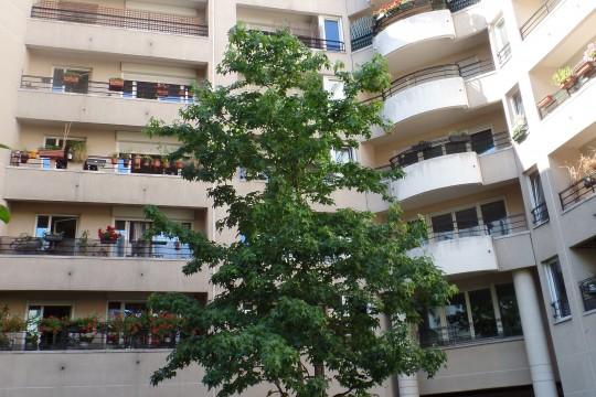 Location appartement 5 pièces 114m²