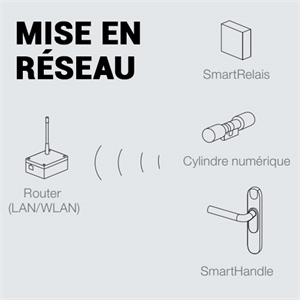 NOEUD DE RESEAU AUTO. P/ SMART HANDLE