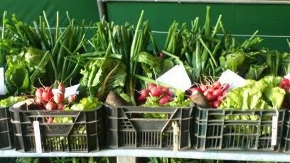 Exemple panier légumes de saisons