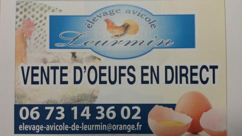 producteur d'oeufs bretagne