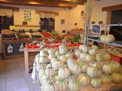 Melon locaux Soldive près de Lunel