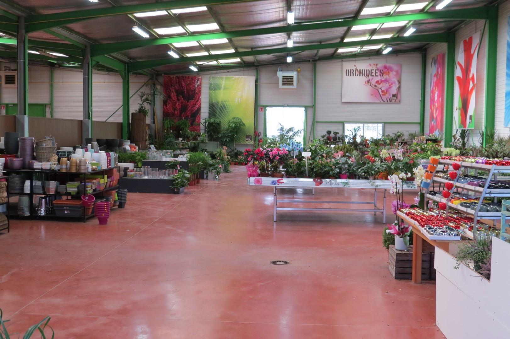 l'espace interieur / potées fleuries