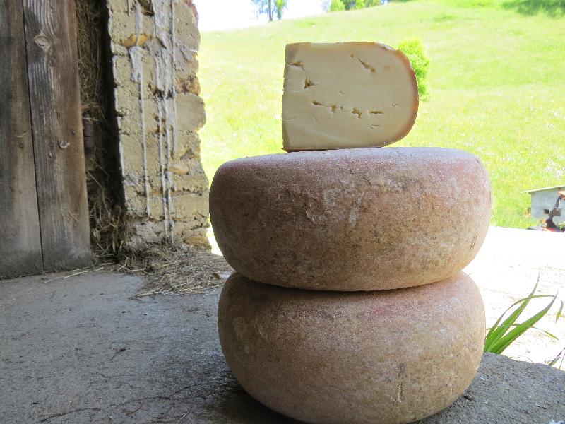 fromage pur rebis au lait cru entier