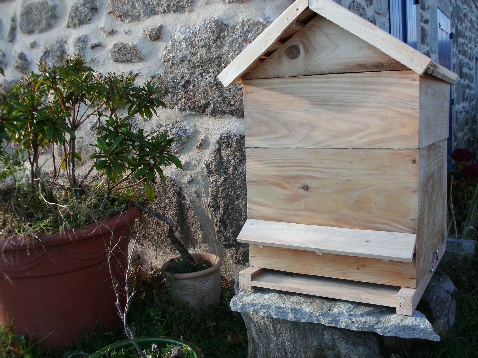 installation de ruches