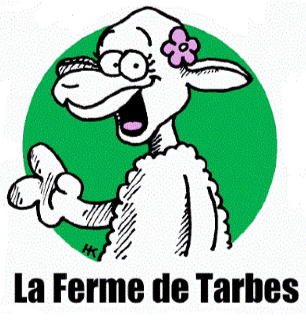 La ferme de Tarbes Fromages et yaourts de brebis