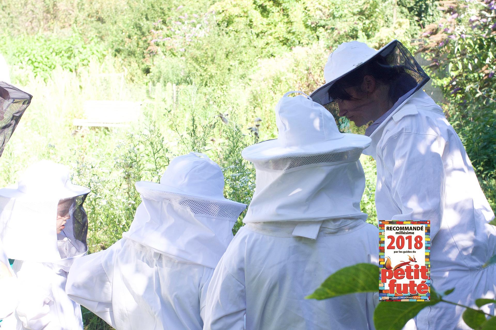Visite du rucher. Une activité référencée par le Petit Futé.