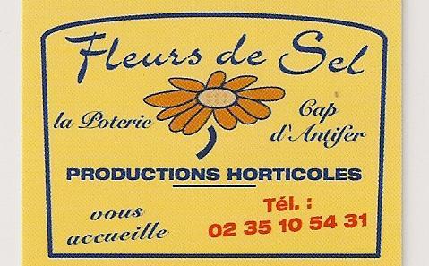 FLEURS DE SEL