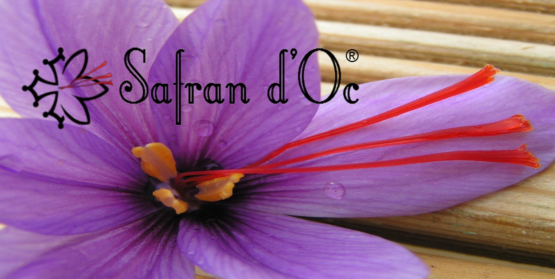 Safran d'Oc