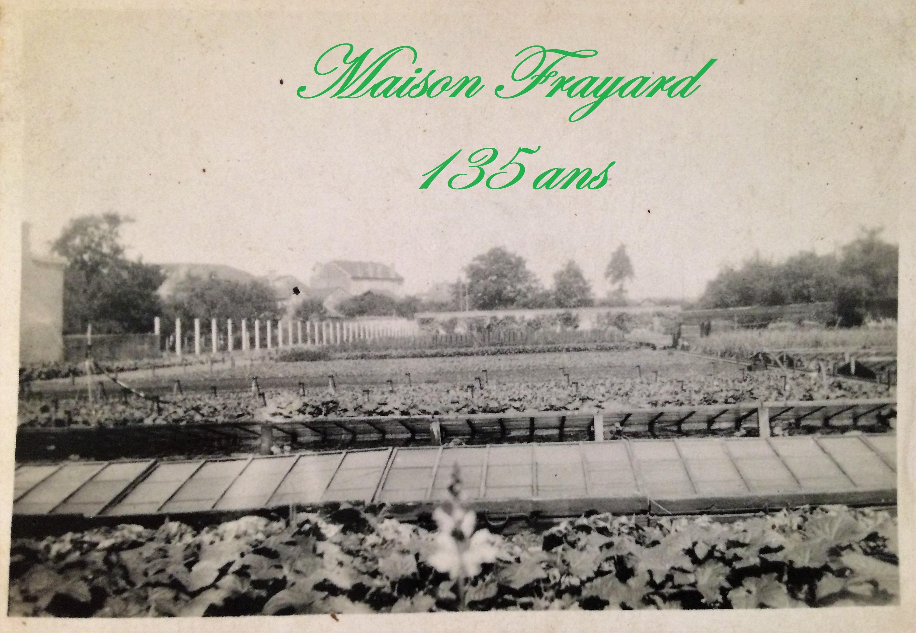 Maison Frayard