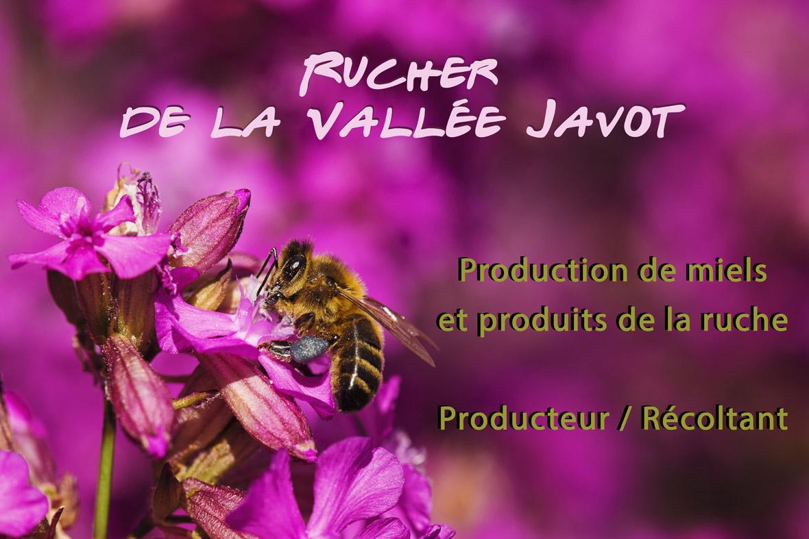 Rucher de la Vallée Javot