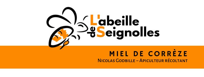 Nicolas Godbille