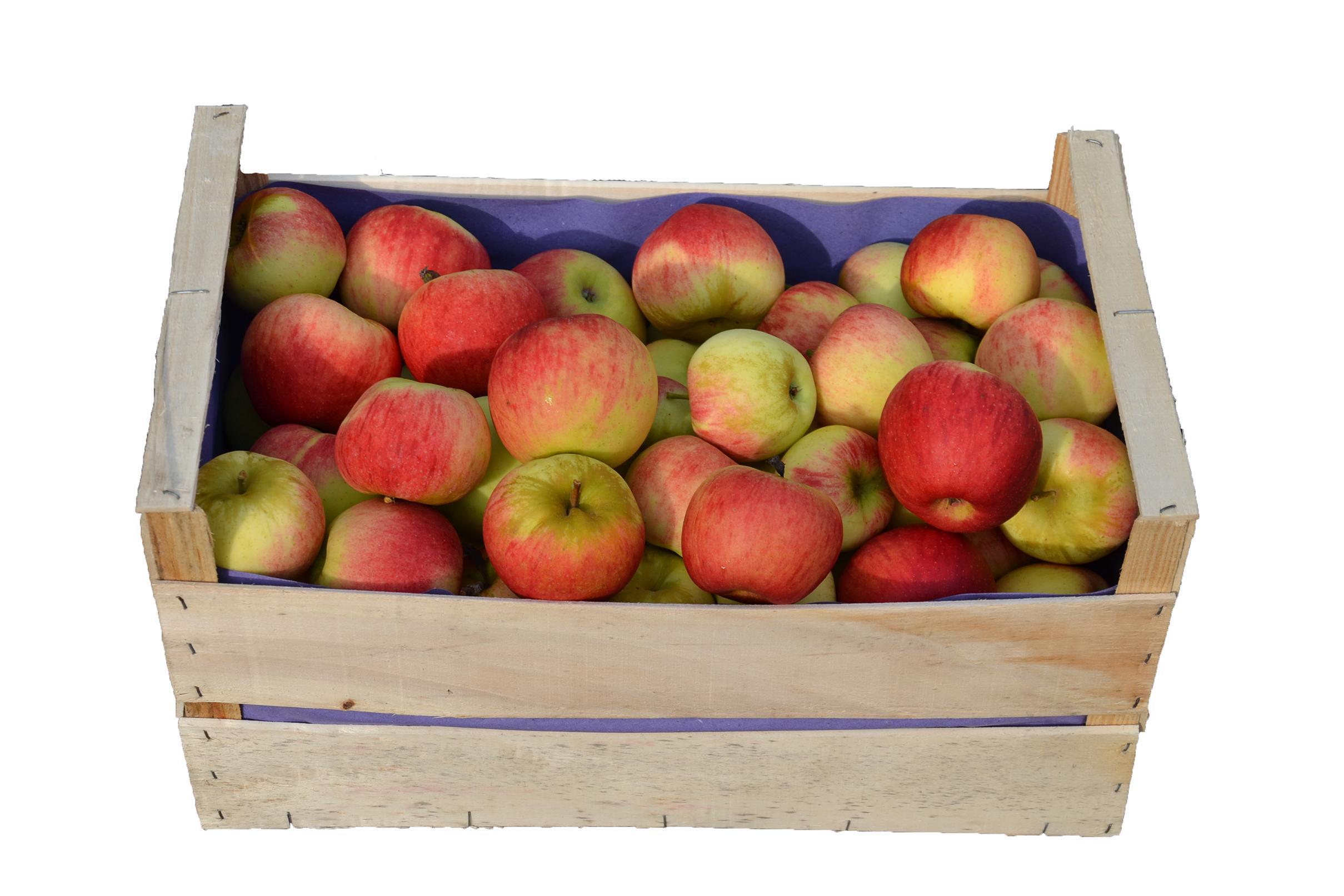 Prix Caisse A Pomme caisse de pommes