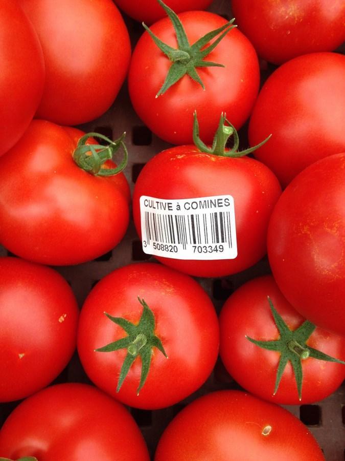 Tomates Ronde