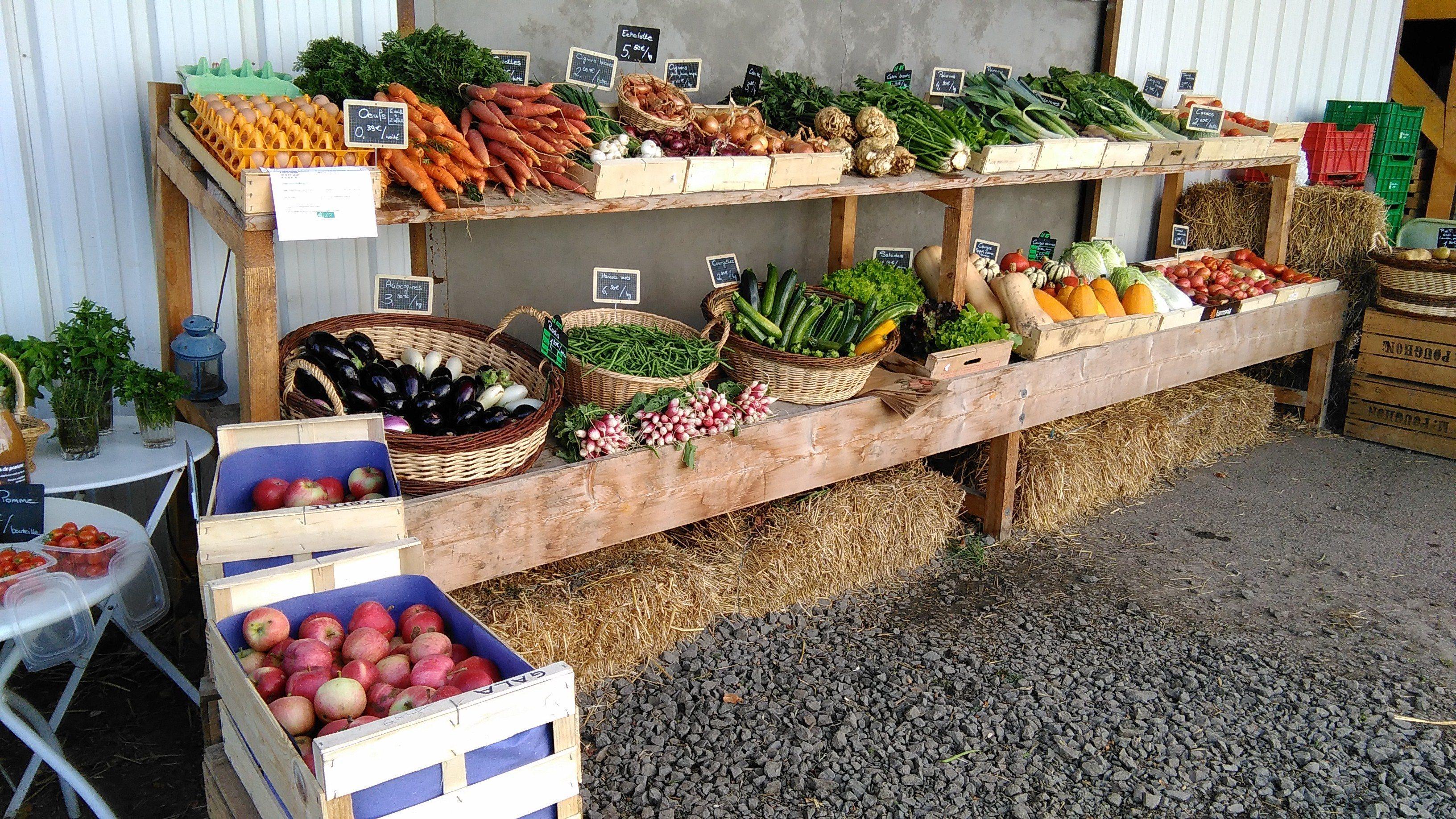 Tous les légumes de saison