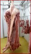 porc noir demi ou entier