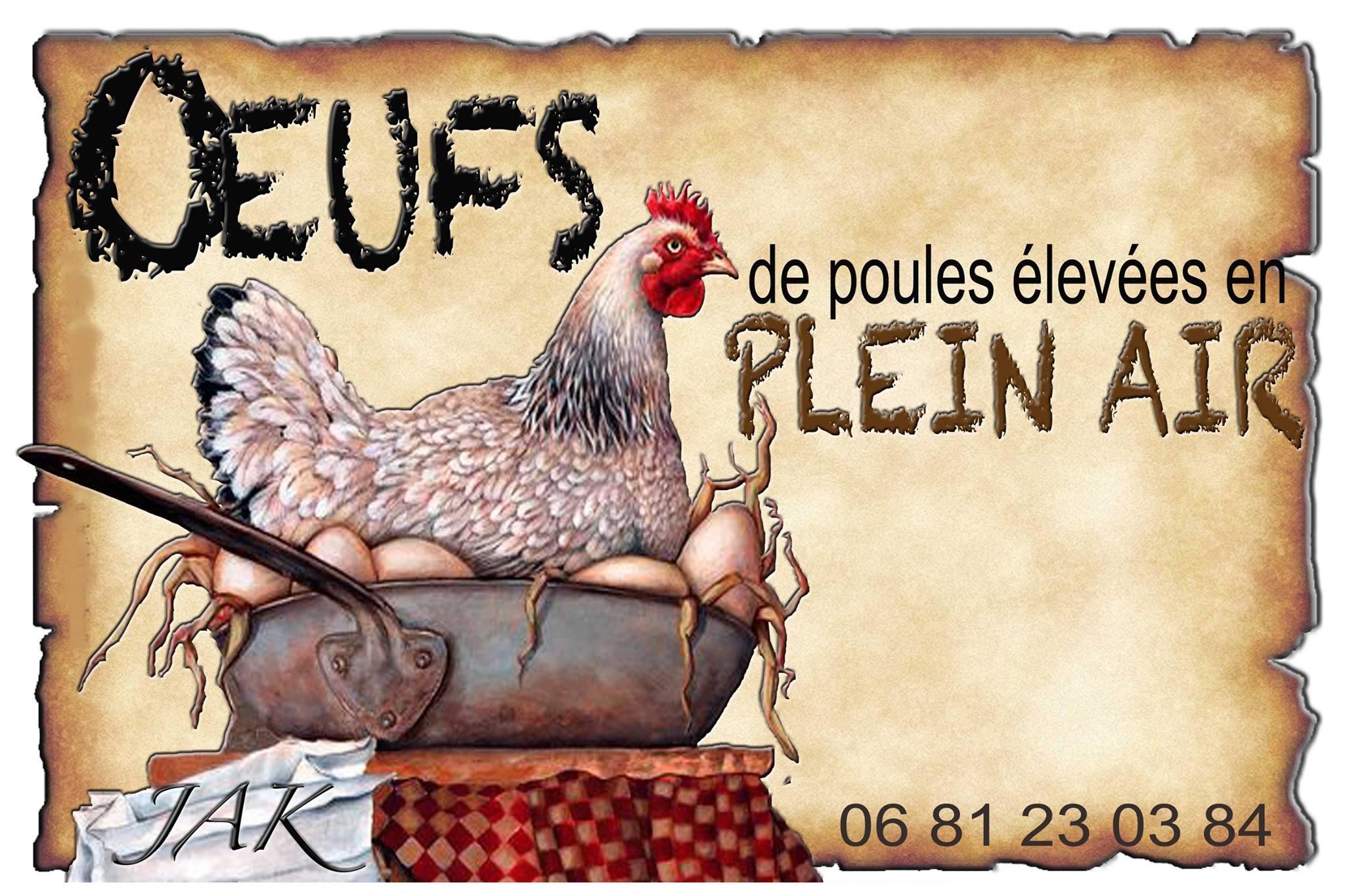 Oeufs FRAIS de poules élevées en plein air