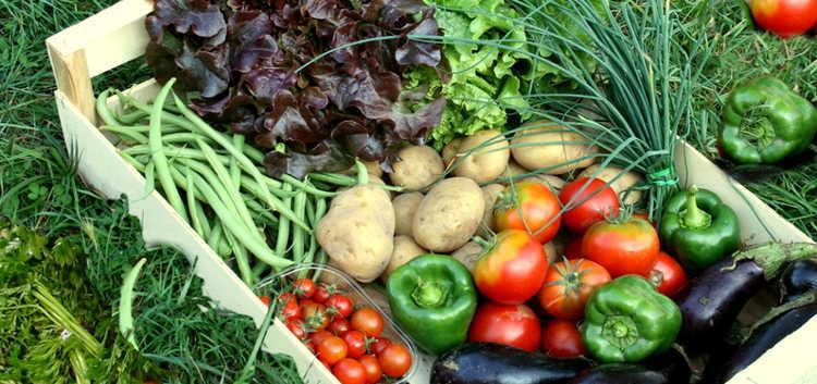 Légumes  naturels de saison