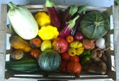 Légumes des saisons