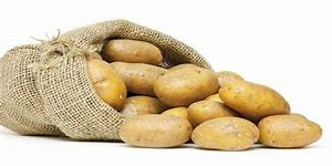"""pommes de terre variété """"nicola"""" BIO"""