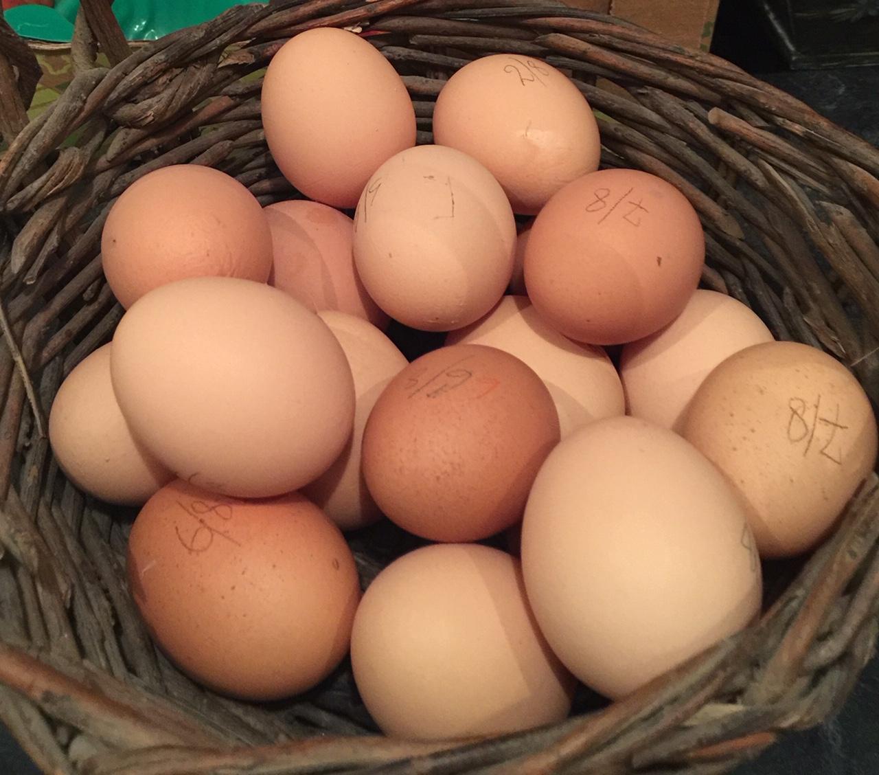Boite de 6 œufs moyen très frais