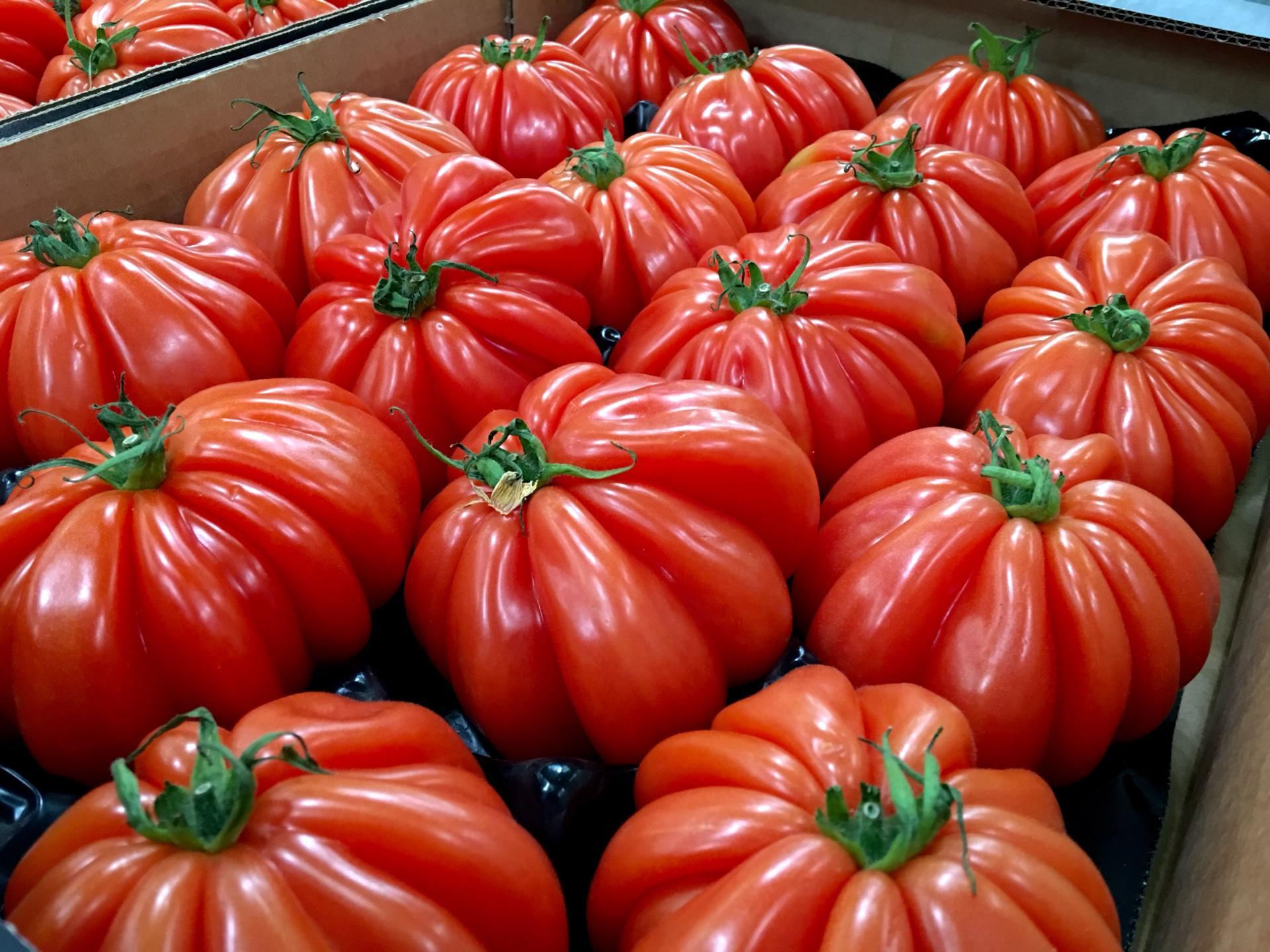 legumes conventionnels ou bios