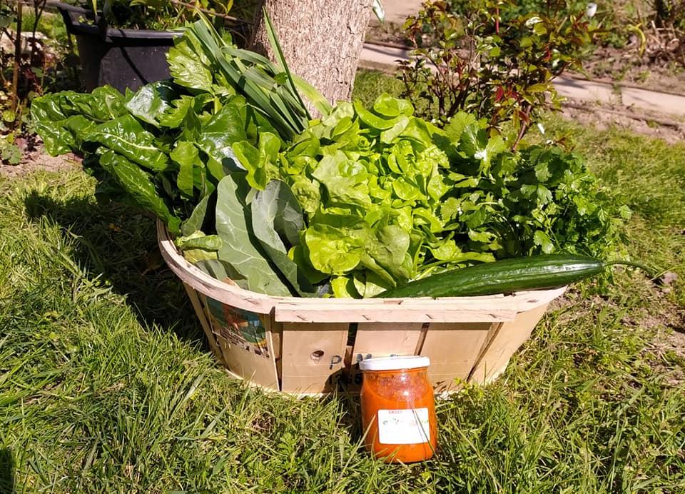 Panier de légumes N°3 Excellia