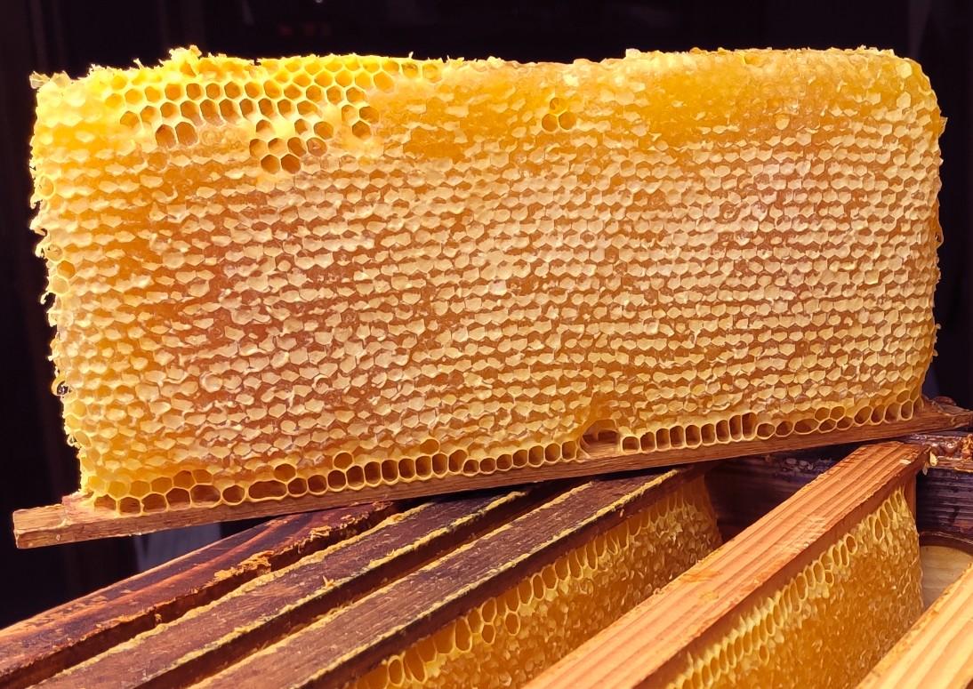 Miel d'été 2020 (en pot de 500g ou 1kg)