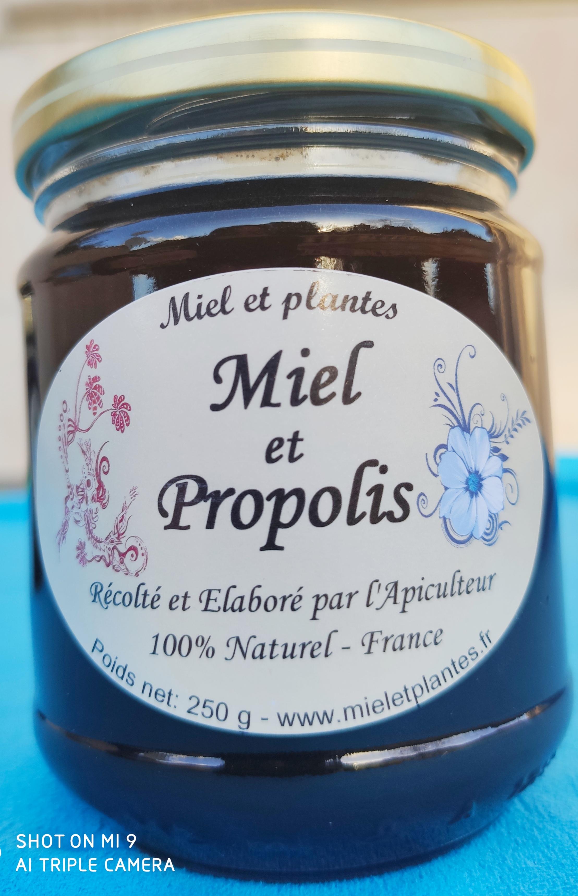 Miel et Propolis (Propomiel)