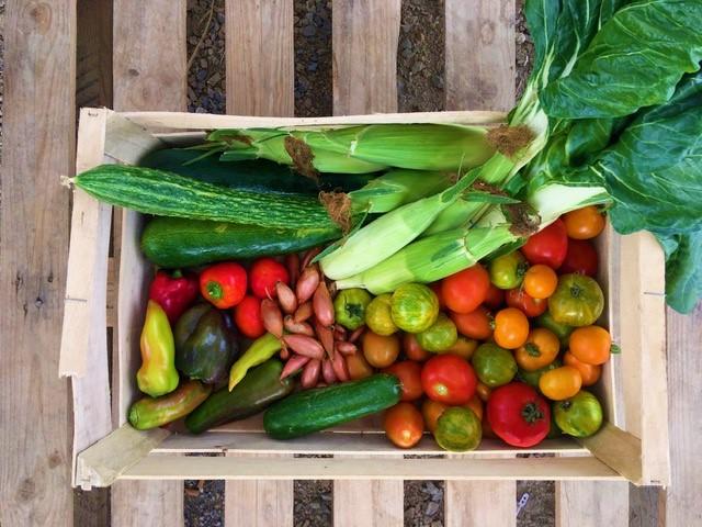 Panier de légumes 3 à 4 personnes