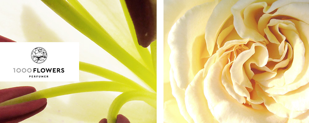 1000 Flowers: 10% de réduction