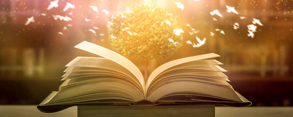 Myrabelle Poésie : écriture à votre image