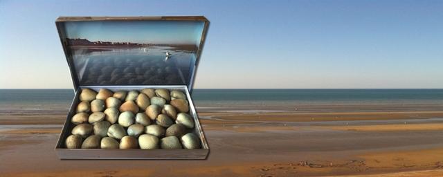 Les Coques de Cabourg : 5,00 € de remise