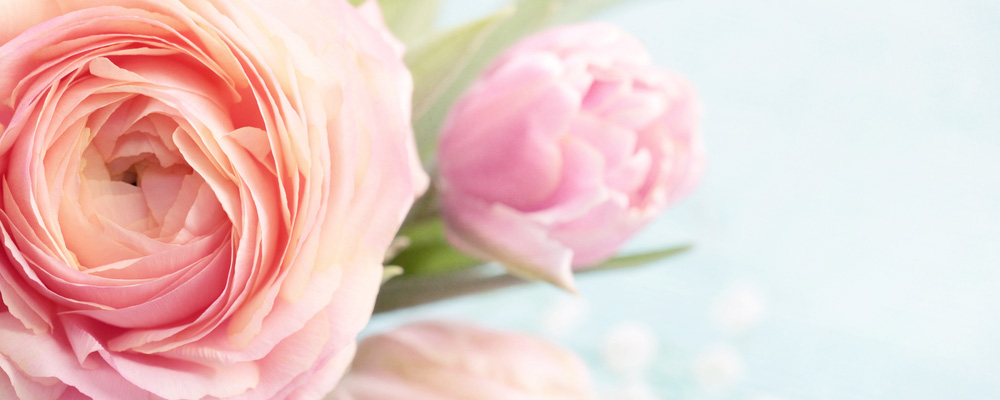 Nuance florale: La 5ème rose offerte