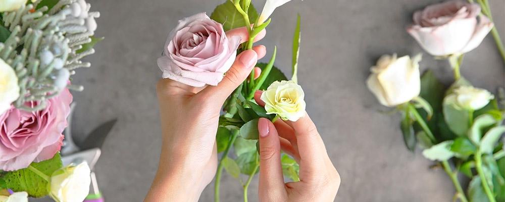 Mademoiselle Fleur : Une plante grasse de bureau offerte