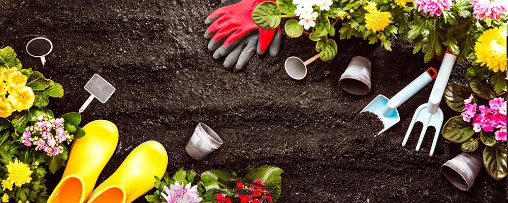 Au bon jardinier : 10 % sur les Poteries d'Albi