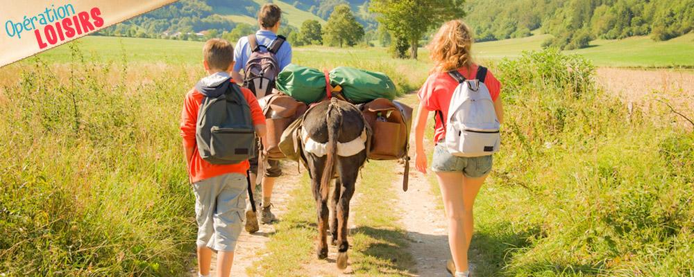 Les p'tits ânes: la journée à 45 euros